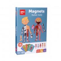 Magneten het menselijk lichaam, Apli