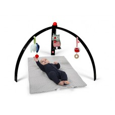 BabySpider activity gym zwart, Franck & Fischer