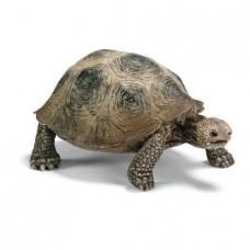 Reuzenschildpad, Schleich