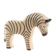 Zebra, Ostheimer