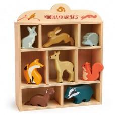 Set bosdieren in kastje, Tender Leaf Toys