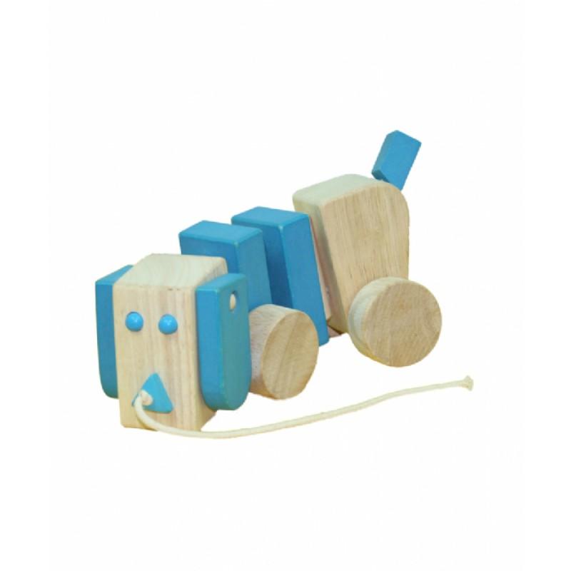 Snuffelhond blauw, Primi Passi